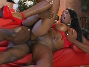 Erotyczna murzynka z ogierem