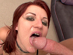 Cute Ava Allure Serves A Yummy Blowjob Before Going Hardcore