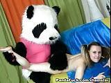 Panda rucha mloda cipke