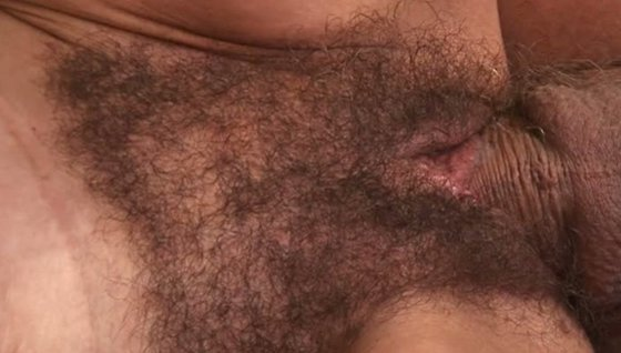 Hairy Pussy 142 - Hairy porn