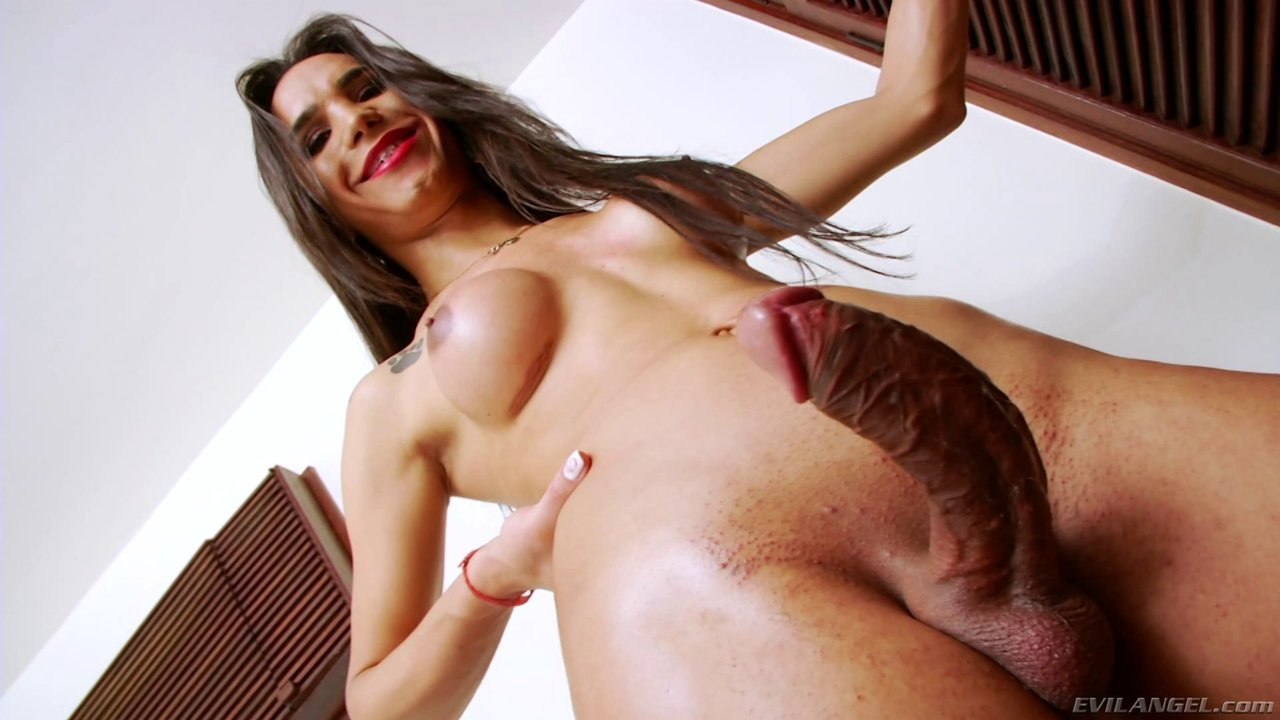Shemale With The Long Brown Hair Is Very Proud Of Her Big Cock